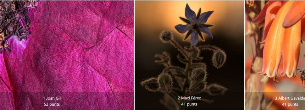 Joan Gil guanya la lligueta de maig de l'Associació Fotogràfica de Vinaròs