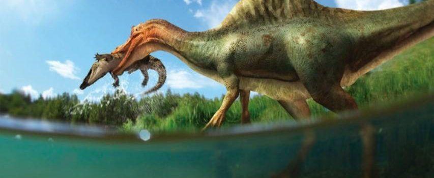 El Morelladon y el Vallibonavenatrix, en un reportaje de National Geographic