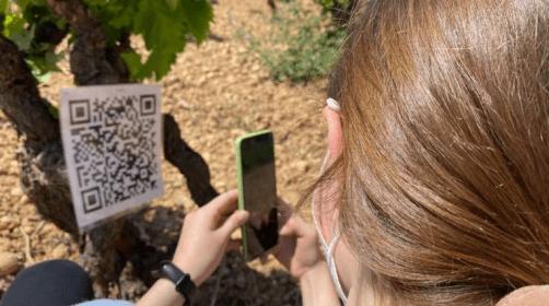 Prop de 550 escolars elaborenpropostes innovadores pel turisme familiar de la Costa Daurada i les Terres de l'Ebre
