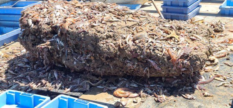 """Pesca"" a Vinaròs d'una roca de dos mil quilos"