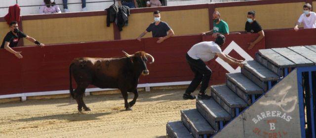 Los actos taurinos van recuperándose en la provincia castellonense