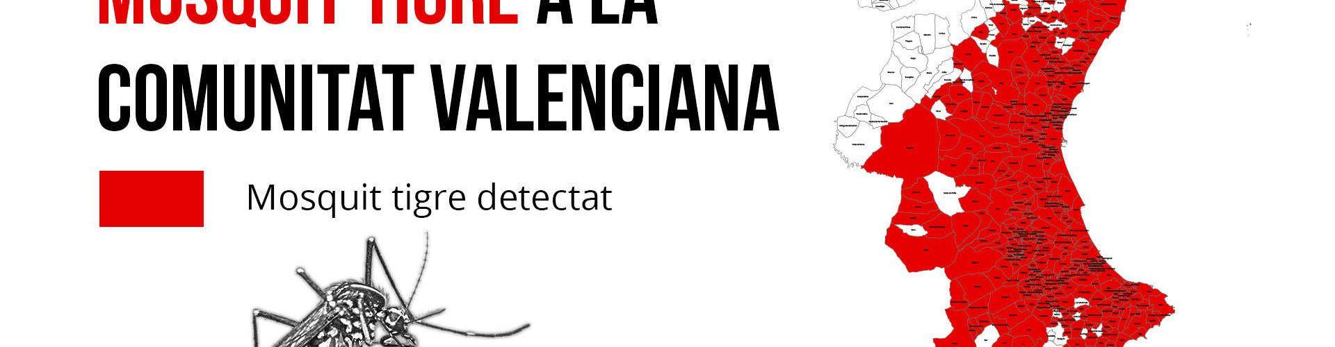 Sanidad destina 350.000 euros a ayudas para erradicar el mosquito tigre en la Comunitat Valenciana