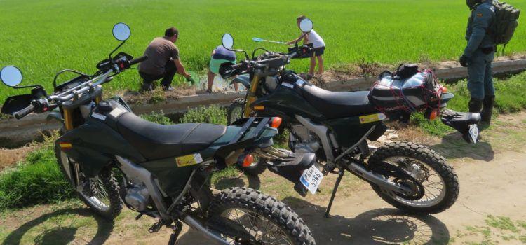 El Servicio de Protección de la Naturaleza de la Guardia Civil colabora en el rescate de casi 500 polluelos de ánade real