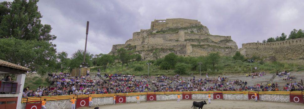 Morella comptarà amb actes taurins durant el mes d'agost