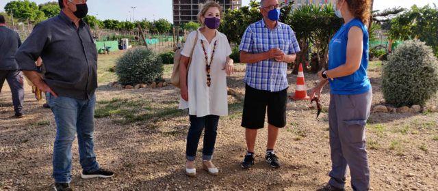 L'Ajuntament de Vinaròs adjudica la totalitat dels horts urbans