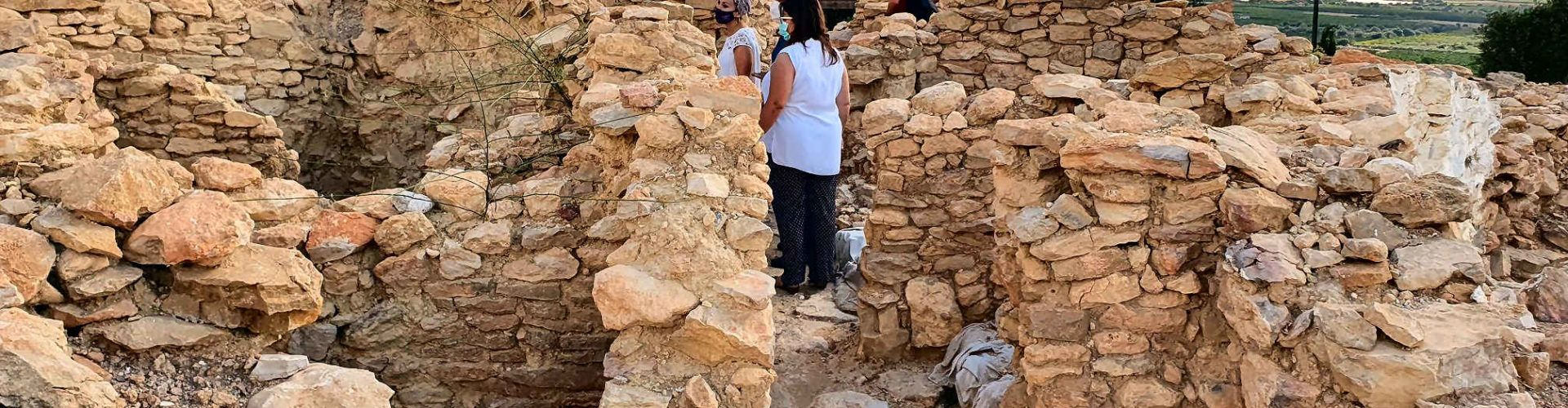Vídeo: visita al poblat ibèric del Puig de la Misericòrdia a Vinaròs