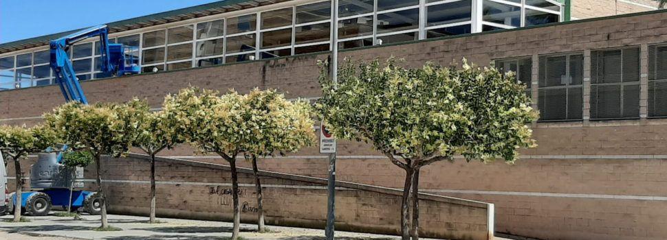 Obres a la coberta del pavelló d'Alcanar per a eliminar les goteres