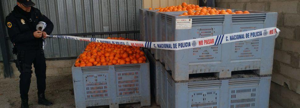 La Policía de la Generalitat detiene a 53 personas en la campaña de prevención de robos en el campo