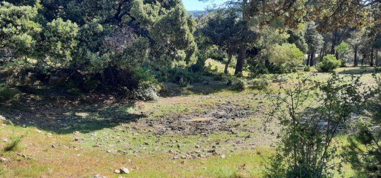 Morella vol crear una reserva de fauna a Vallivana per a protegir a una espècie que té més de 250 milions d'anys