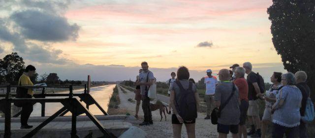 Fotos: Excursió pels espais de la Batalla de l'Ebre a Amposta