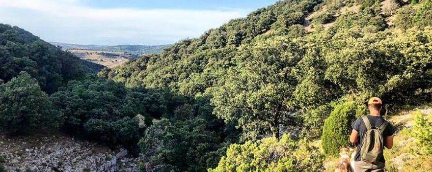 2.000 cazadores urgen al Consell paralizar privatizaciones de cotos