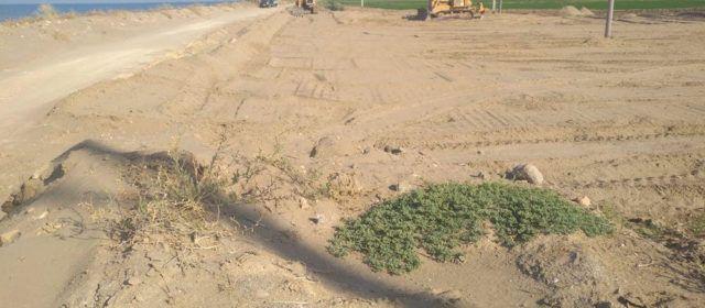 El GEPEC-EdC demana la paralització immediata de la construcció d'un aparcament al Parc Natural del Delta de l'Ebre