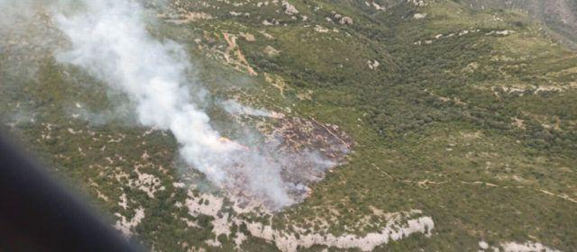 Incendi als termes de Freginals i la Ràpita que ha afectat 2,7 hectàrees