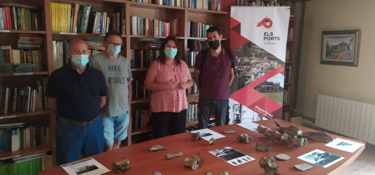 La Diputació col·labora en la constitució d'un museu a Vallibona amb la reproducció dels ossos del dinosaure local