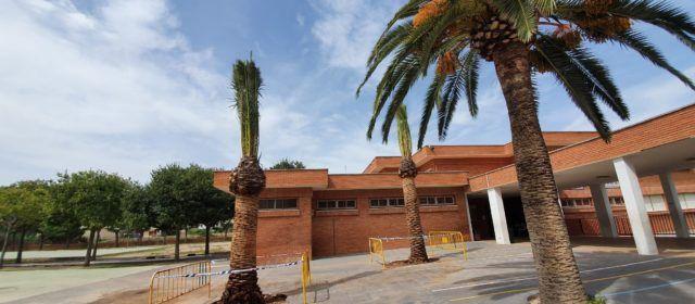 Fotos: nou curs, noves palmeres a l'Assumpció de Vinaròs