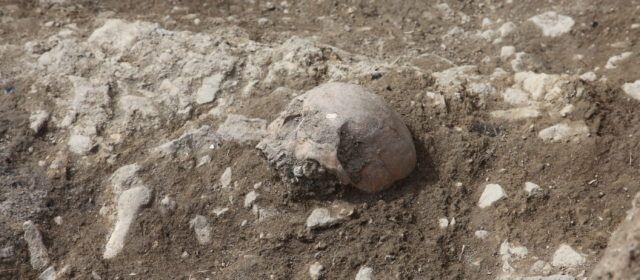 Apareixen restes d'inhumacions en les noves excavacions de Portell