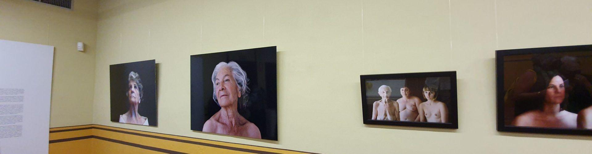 La Fundació Caixa Vinaròs reobre portes amb una singular exposició