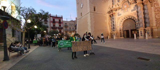 Vídeo i fotos: Nova manifestació de Fridays For Future Vinaròs