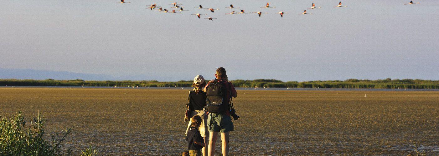 La innovació a les platges de les Terres de l'Ebre reconeguda com una de les cent millors pràctiques de sostenibilitat de destinacions turístiques del món