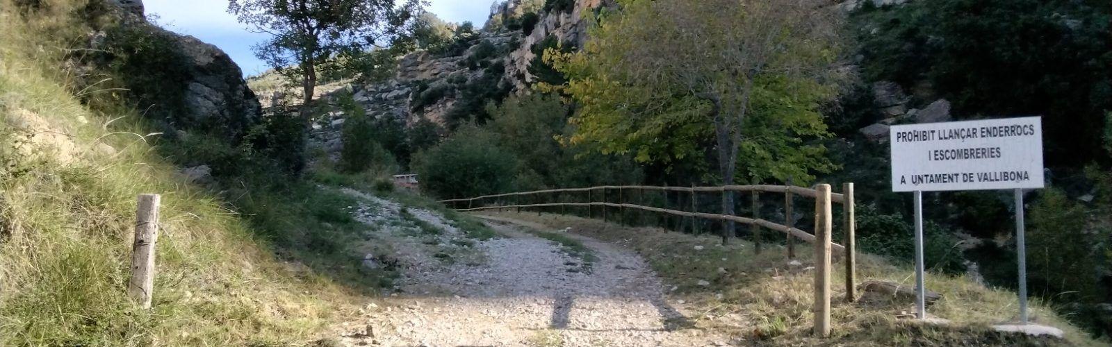 La depuradora de Vallibona compta amb 231.851 euros de pressupost